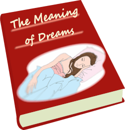 Book The Meaning of Dreams